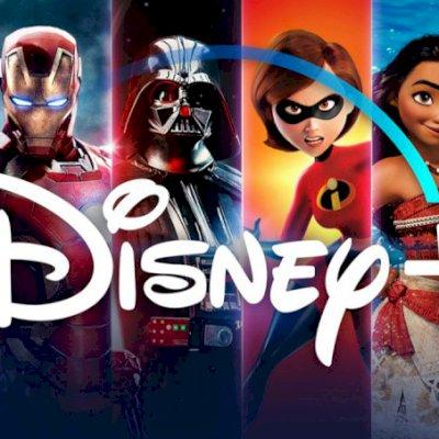 Disney Plus 12 meses (1 perfil)